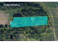 Prodej lesních pozemků